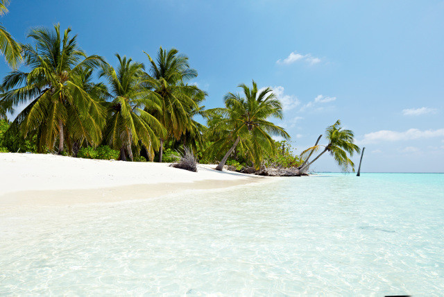 Ving Maldiverna